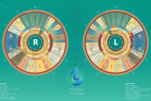 Integrated Iridology Chart by Toni Miller